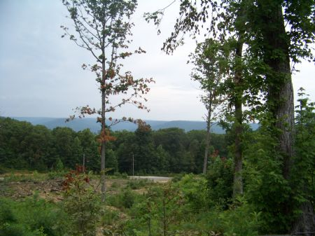 8.3 Unrestricted Acres With A View : Sewanee : Marion County : Tennessee