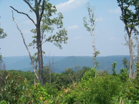 No Hoa No Restrictions : Sewanee : Marion County : Tennessee