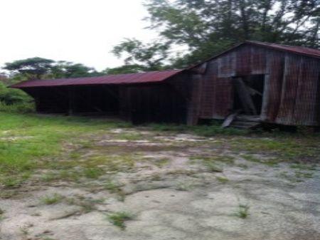 40.99 Acre Old Farm : Aiken : Aiken County : South Carolina