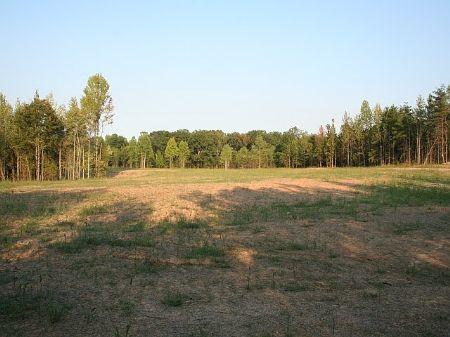 Jenkins Ridge : Cartersville : Cumberland County : Virginia