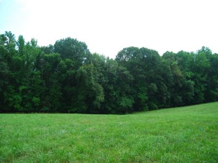 82.49 Acres On Tyger River : Moore : Spartanburg County : South Carolina