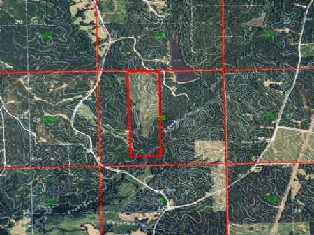 John  Haye : Hazlehurst : Copiah County : Mississippi