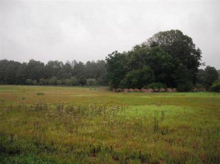 Perfect Recreational Property : Cordele : Crisp County : Georgia