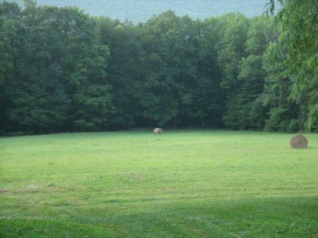 40 Acre Farm : Bloomsburg : Columbia County : Pennsylvania
