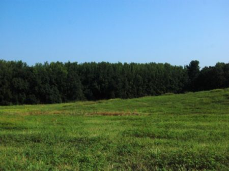 19 Acre Mini-farm, Owner Financing : Boiling Springs : Spartanburg County : South Carolina