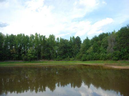 10 Acres Near National Battlefield : Gaffney : Spartanburg County : South Carolina