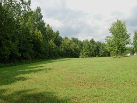 18.49 Acres Near Grassy Pond : Gaffney : Cherokee County : South Carolina