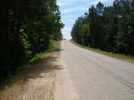 Heavily Wooded Tract - 92.93+/- Ac : Woodbury : Coweta County : Georgia