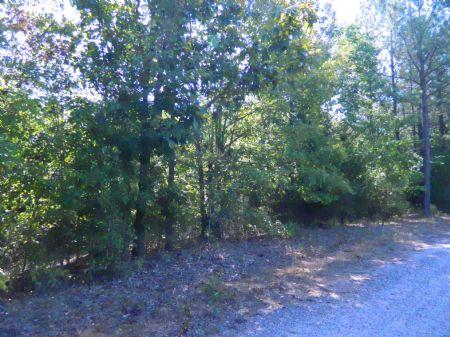 65.68 Acre Hunting Tract : Stephens : Oglethorpe County : Georgia