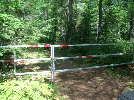 Wooded Lot In Lac Du Flambeau : Lac Du Flambeau : Vilas County : Wisconsin