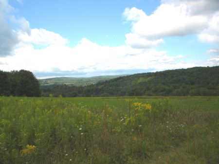 116+ Acres Farmland Woods W/ Rights : Willet : Cortland County : New York