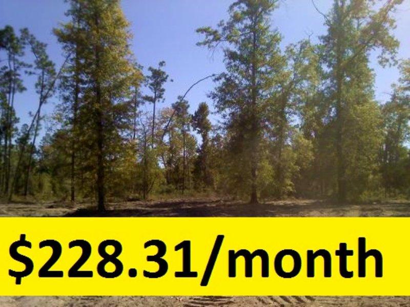 7.34 Ac Plus Well & Septic : Eastman : Dodge County : Georgia