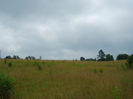 28.5 Acres Of Pastureland : Gaffney : Cherokee County : South Carolina