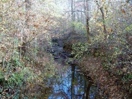Great Father And Son Getaway : Milledgeville : Baldwin County : Georgia
