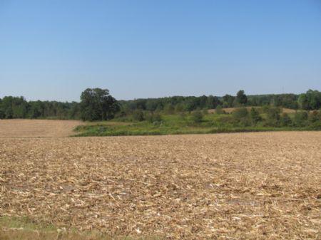 Farm And Hunting Land : Huntingdon : Carroll County : Tennessee