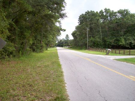 Lake City Acreage : Lake City : Columbia County : Florida