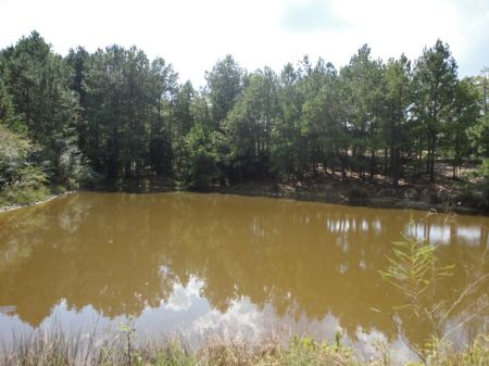 Bank Owned 82 Acres With A Pond : Lincolnton : Lincoln County : Georgia