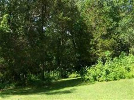 88 Acres Of Gorgeous Woods : Spring Green : Sauk County : Wisconsin