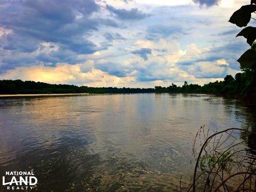 Alabama River Timber & Hunting Inve : Carlton : Clarke County : Alabama