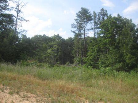 Great Recreation Spot : Farmville : Prince Edward County : Virginia