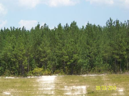 240 Ac Approved Subdivision : Aiken : Aiken County : South Carolina