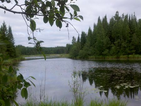 20 Ac On Camp 15 Springs : Minocqua : Oneida County : Wisconsin