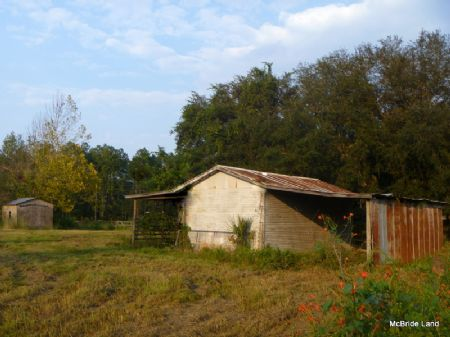 Rolling Green Acres (6 Ac.-citra) : Citra : Marion County : Florida