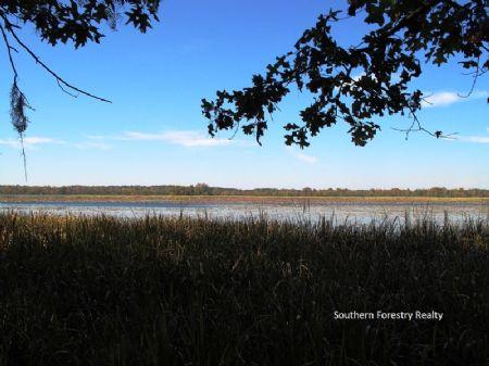 Fairchild Farm : Donalsonville : Seminole County : Georgia