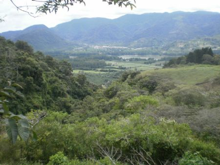 7.5 Acres- 2 Houses-river-waterfall : Paraiso : Costa Rica