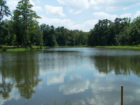 Kentnor Springs : Bainbridge : Decatur County : Georgia