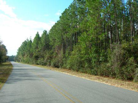12 Ac On Cr 100a - $47,940 : Starke : Bradford County : Florida