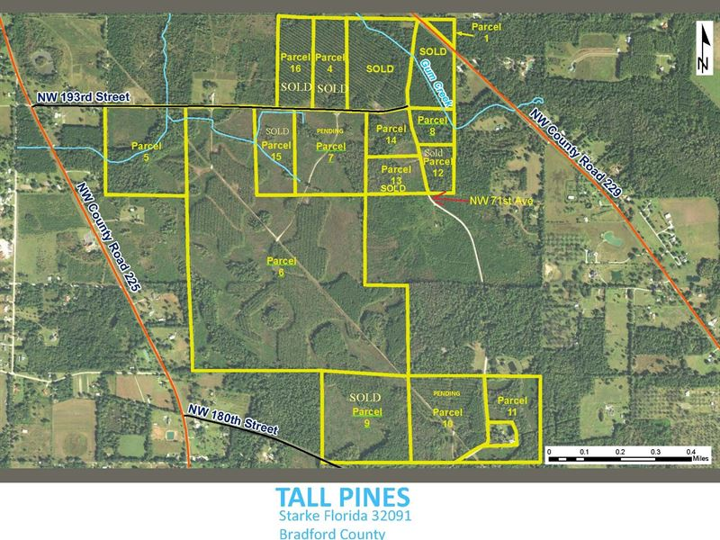 8.39 Acres Lot 8 In Tall Pines : Starke : Bradford County : Florida