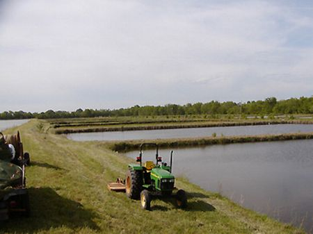 Cattle farms for sale page 35 of 36 farmflip for Alabama fish hatcheries