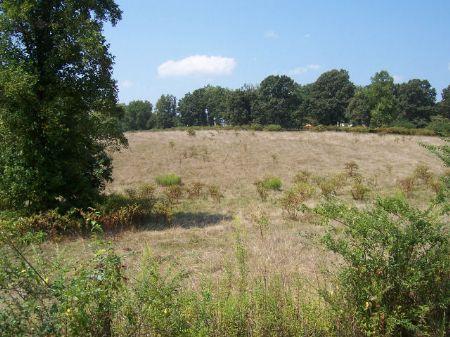 Potential Farmland : Clarkesville : Habersham County : Georgia
