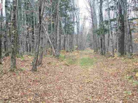 Tbd Black Creek Road Mls# 1063181 : Skanee : Baraga County : Michigan