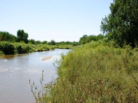 Veeman South Platte River Ranch : Sterling : Logan County : Colorado