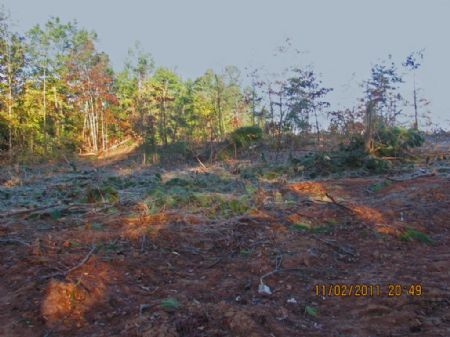 78-acre Versatile Hunting Tract : Gaffney : Cherokee County : South Carolina