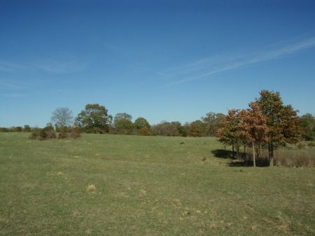 Stallion Hills Tract 3 : Antlers : Pushmataha County : Oklahoma