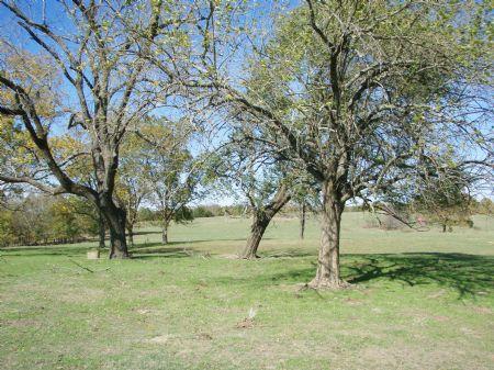 Stallion Hills Tract 4 : Antlers : Pushmataha County : Oklahoma