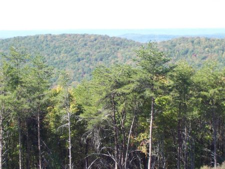 Potential Conservation Investment : Coosa : Chattooga County : Georgia