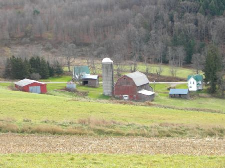 325 Acres Former Dairy Farm 2 Homes : Greenwood : Steuben County : New York