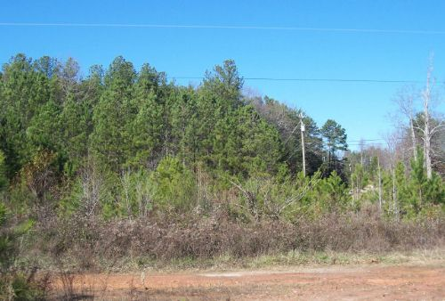 Residential Development : Gainesville : Hall County : Georgia