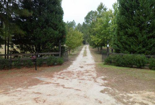 Lena J Farms : Lumber City : Wheeler County : Georgia