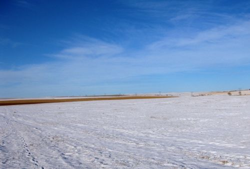 South Dakota Land Auction : Hayes : Stanley County : South Dakota