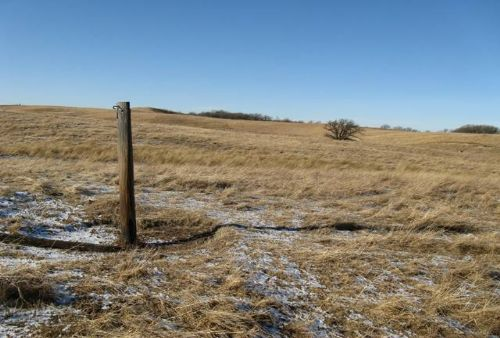 South Dakota Grass Land Auction : South Shore : Grant County : South Dakota