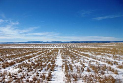 South Dakota Farm Land Auction : Box Elder : Pennington County : South Dakota