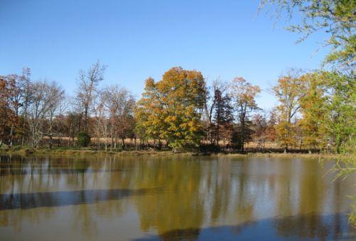 Spectacular Views : Siler City : Chatham County : North Carolina