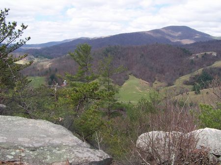 46 Ac Mtn Land, Wildlife, Private : Independence : Grayson County : Virginia
