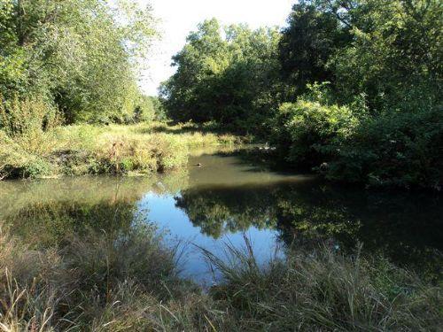 Miller Place On Briar Creek : Matthews : Jefferson County : Georgia