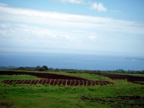 20 Acres, Waterfalls, Views 425k : Hilo : Hawaii County : Hawaii